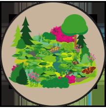 Illustration habitats